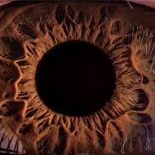 Il glaucoma… prevenire è meglio che curare!